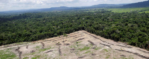 An aerial view of cleared land is seen during an operation to combat illegal mining and logging conducted by agents of the Brazilian Institute for the Environment and Renewable Natural Resources, or Ibama, supported by military police, in the municipality of Novo Progresso, Para State, northern Brazil, November 11, 2016. REUTERS/Ueslei Marcelino           SEARCH