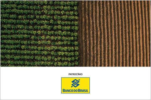 Agronegócio sustentável - 2ª edição