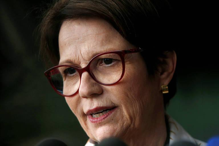 """Deputada federal Tereza Cristina (DEM-MS), escolhida pelo presidente eleito, Jair Bolsonaro;  ela assinou acordos para incentivos fiscais no final de 2013, ao mesmo tempo em que mantinha uma """"parceria pecuária"""" com a JBS"""
