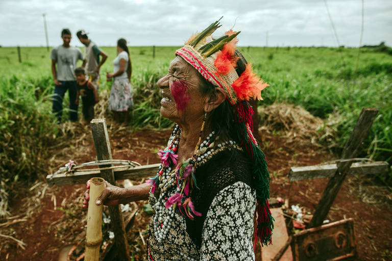 Demarcação de terras indígenas - MS