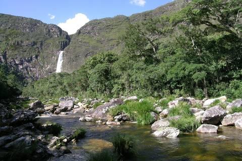 Bolsonaro critica ONGs e põe em xeque R$ 1 bi de projetos ambientais