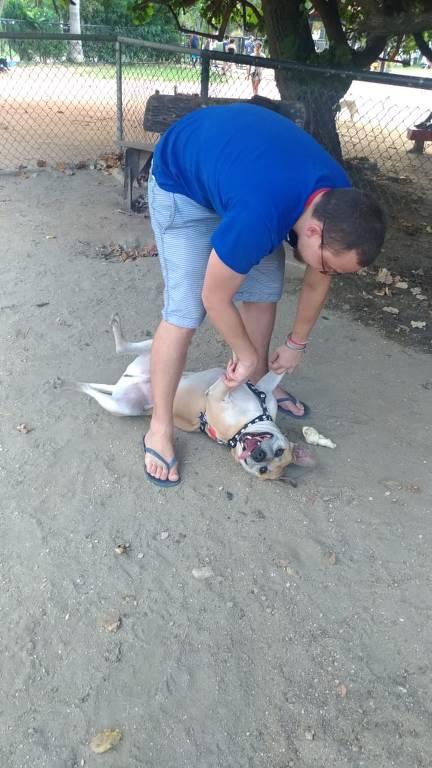 Leo, cachorro adotado na Argentina