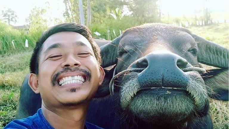 O agricultor tailandês que viralizou na internet graças às selfies com seu amigo búfalo