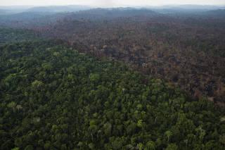 Desmatamento em Itaituba/PA