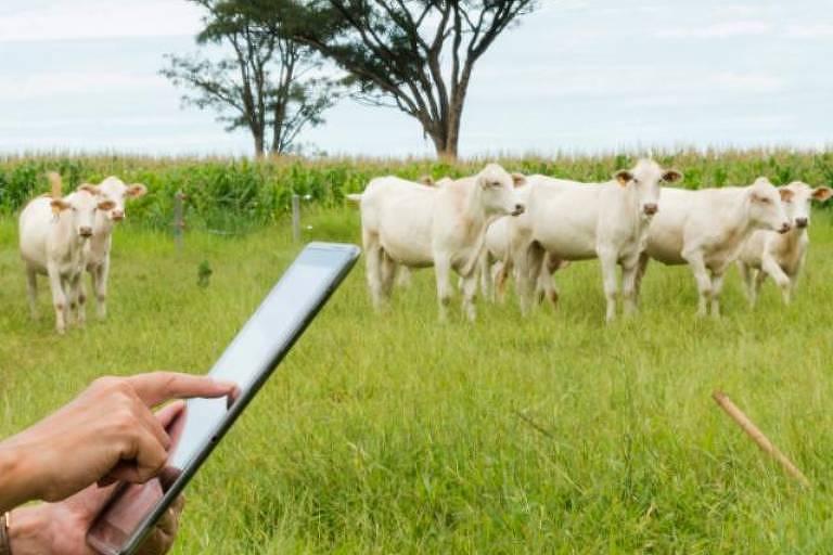 Internet das coisas usada na agricultura