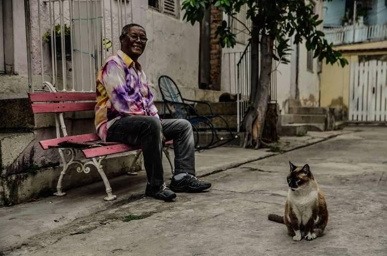 senhor sentado em banco com gato no primeiro plano