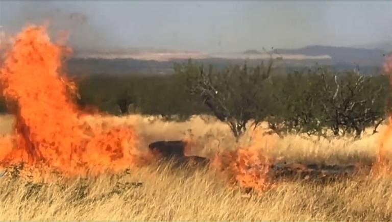 Pai causa incêndio florestal em evento para revelar sexo de bebê nos EUA