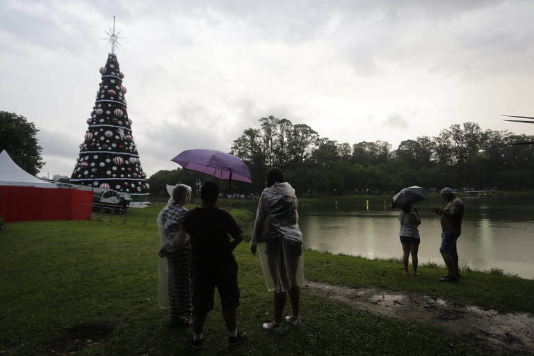 Árvore de Natal do Ibirapuera é inaugurada