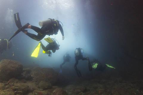 Mergulhadores nadam na Laje de Santos, reserva ambiental em Santos (SP)