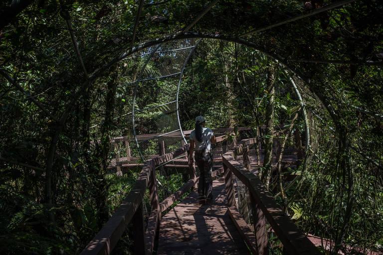 O novo parque Ecológico Imigrantes, que possui uma área de passeio por passarelas, trilhas e um bondinho que da acesso a parte alta do parque