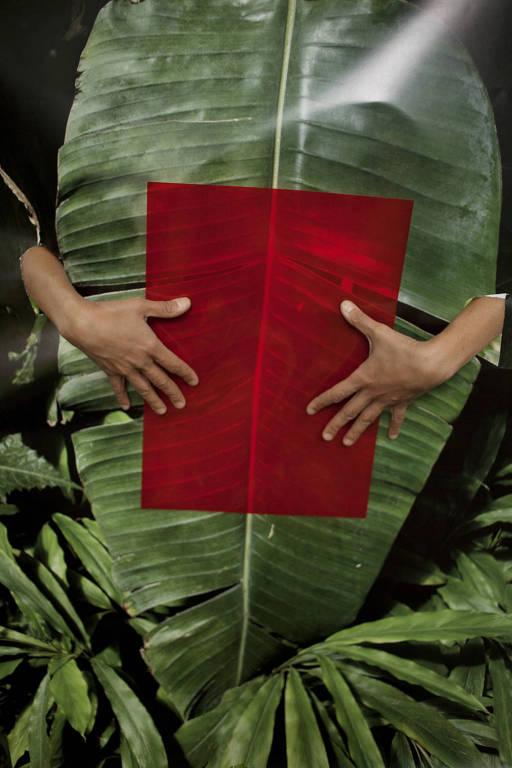 alguem segura uma folha vermelha diante de uma grande folha de planta