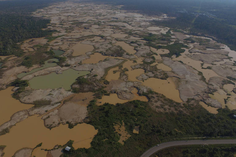 Atividade ilícita em La Pampa, na Amazônia peruana