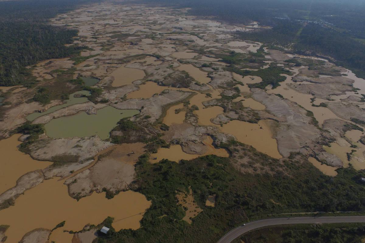 Chegou o ponto de virada na Amazônia?