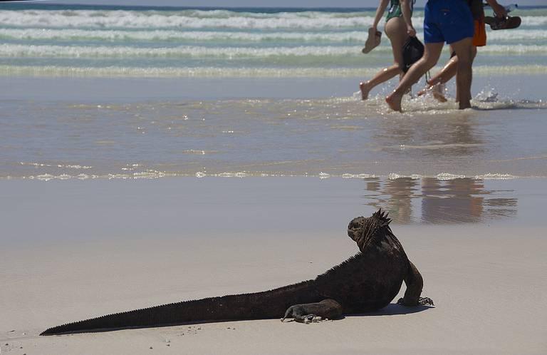 Uma viagem a Galápagos