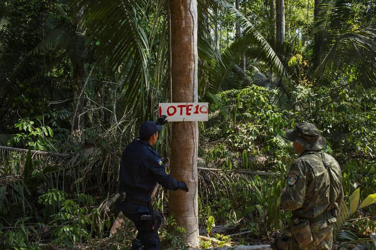 Placa indicando área destinada a grilagem dentro da Floresta Nacional Bom Futuro em Rondônia