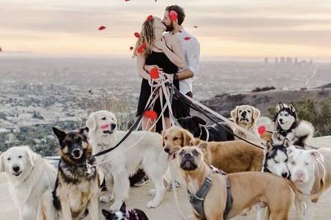 bom pra cachorro - homem leva cães a pedido de casamento