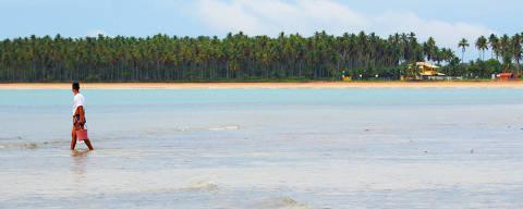 Pescador local aproveita a maré baixa para procurar polvos escondidos nas tocas dos arrecifes .Credito Franco Adailton / Folhapress