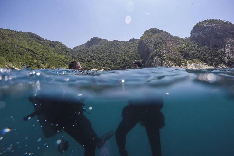Mergulhadores na água. Foto mostra metade do corpo deles debaixo d'água e metade em cima, com a ilha ao fundo