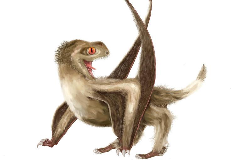 Concepção artística de pterossauro com quatro tipos diferente de penas na cabeça, pescoço, corpo e asas, segundo descrição de fósseis achados na China