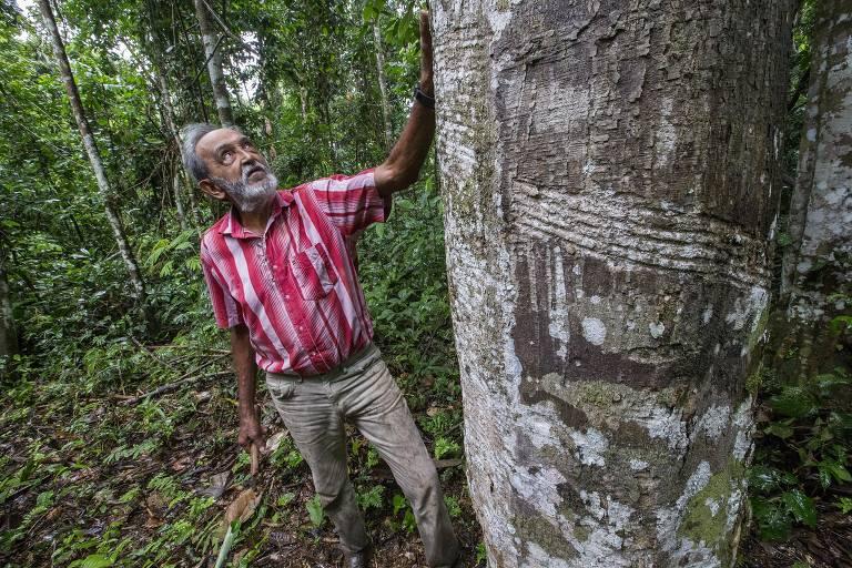 Xapuri, no Acre, 30 anos após a morte de Chico Mendes