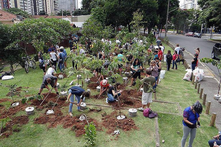 Primeira Floresta de Bolso, em 2016, na Vila Olímpia, zona Oeste de São Paulo