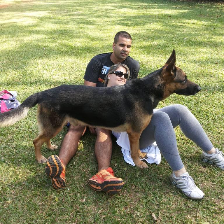 Os animais da veterinária Vanessa Carlini