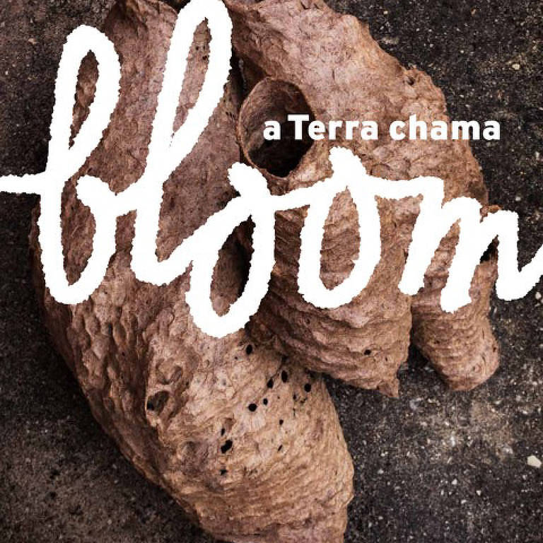 Capa da Bloom A Terra Chama