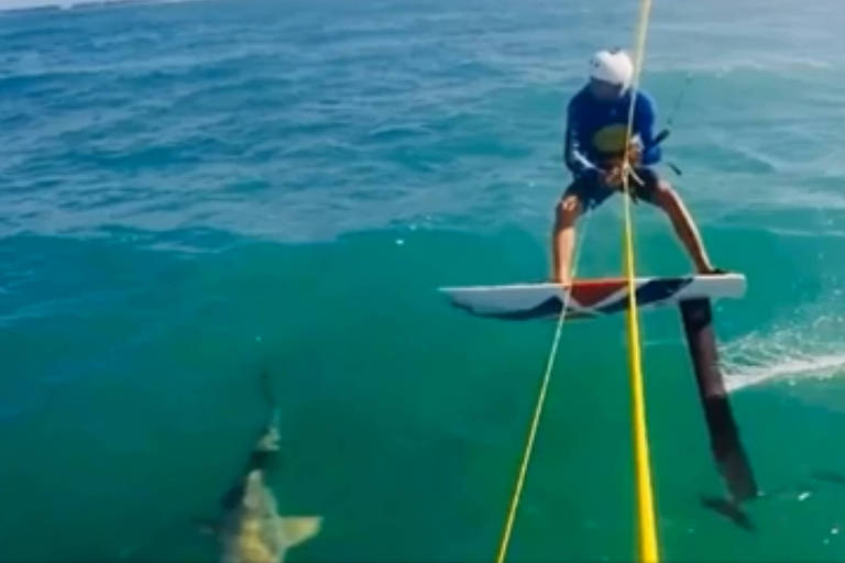 Atleta dominicano se choca em alta velocidade com tubarão