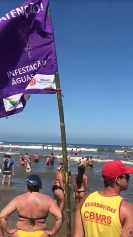 Bandeiras de cor lilás indicam a ocorrência de águas-vivas no litoral do Rio Grande do Sul