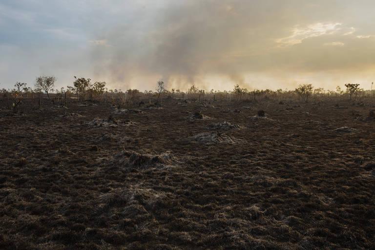Ibama vai lançar edital para contratar satélite para monitorar desmatamento na Amazônia