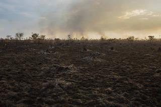 Área de pasto queimado em Humaitá (AM)