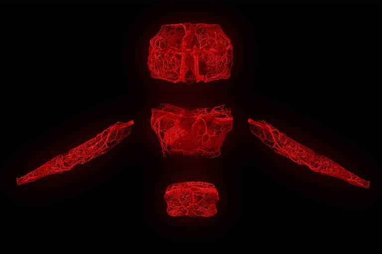 'The Modular Body', uma história online de ficção científica sobre o uso de células humanas e órgãos artificiais para criar um organismo vivo, do artista holandês Floris Kaayk