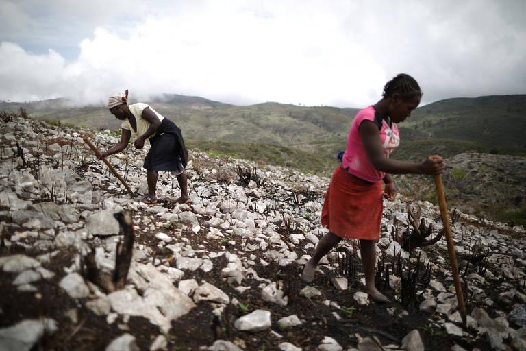 Mulheres em plantação próxima a Boucan Ferdinand