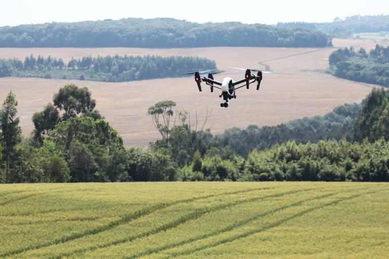 Drone utilizado no monitoramento de lavoura de trigo em Carambeí (PR)
