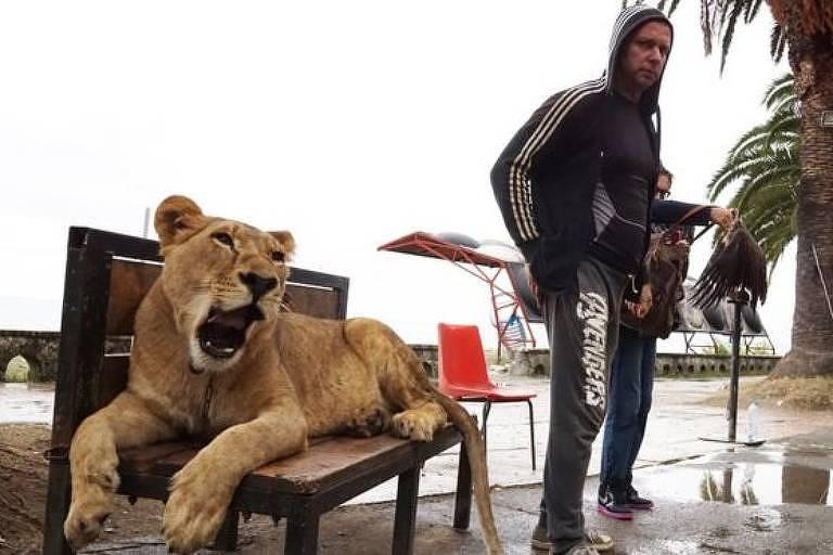 Um homem com sua leoa 'de estimação' na região do Mar Negro, na Abecásia, território que já foi parte da Geórgia