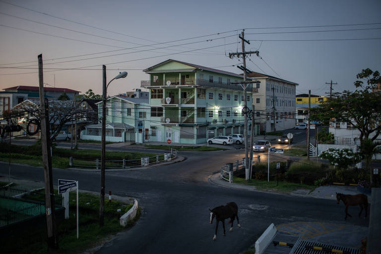 Guiana projeta crescimento