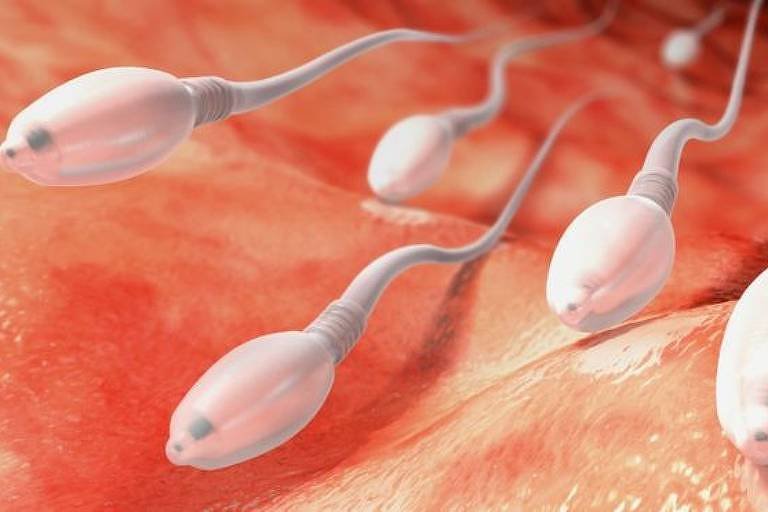 Médicos alertam que não se deve fazer injeção de sêmen no corpo