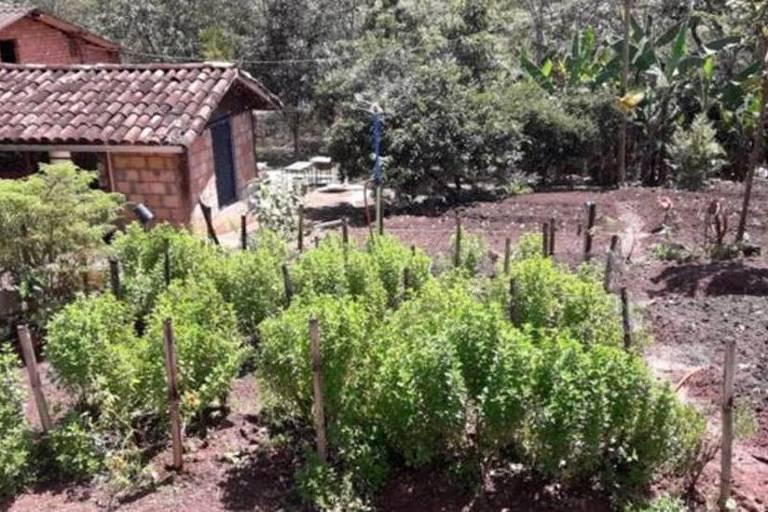 A lama destruiu e cobriu casas, hortas, vegetação