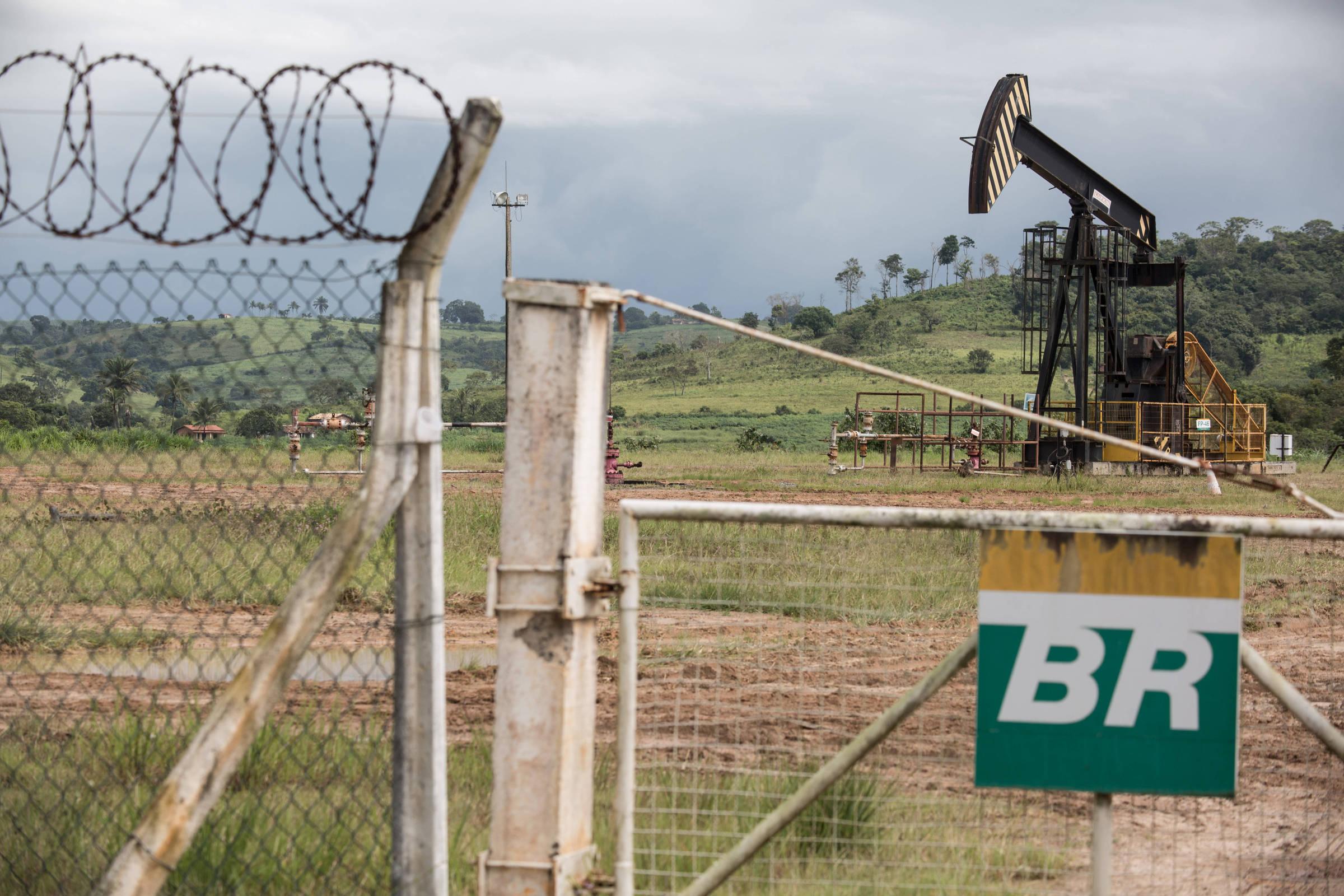 Resultado de imagem para Cade oficializa suspensão de processo contra empresas que admitiram cartel na Petrobras
