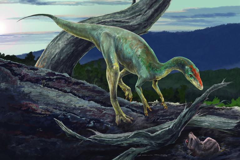 Ilustração de como seria o dinossauro Nhandumirim waldsangae