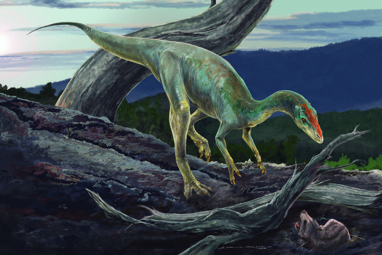 Antepassado do Tyrannosaurus rex