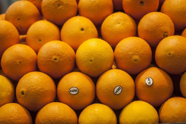 8076deb8cf Por que a laranja ganhou sentido de gíria político-policial  - 14 02 ...