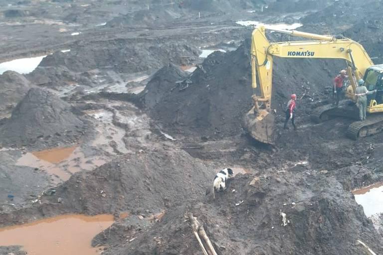 Bombeiros fazem buscas por corpos na lama em Brumadinho (MG)