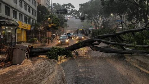 SÃO PAULO, SP, 17.01.2019: CHUVA-SP - Chuva forte derruba árvore de grande porte na avenida 9 de Julho e interdita os dois sentidos da pista, próximo ao hospital Sírio Libanês, em São Paulo. (Foto: Eduardo Anizelli/Folhapress)