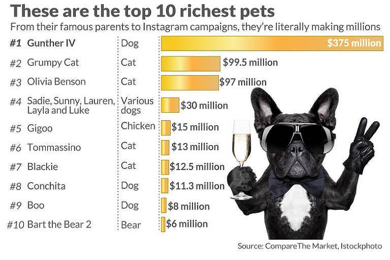 Os animais mais ricos do mundo