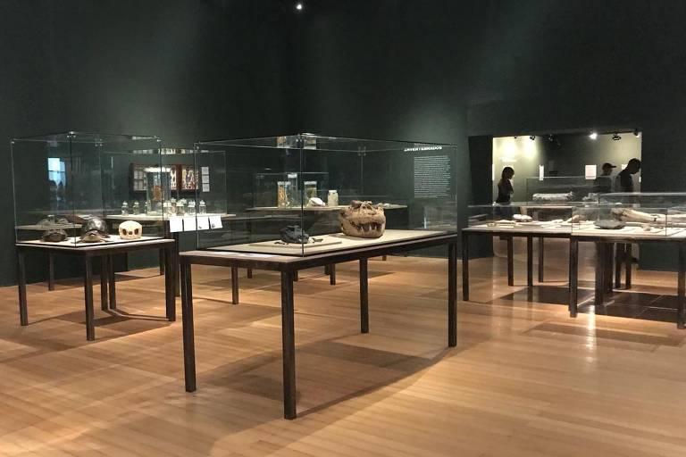 """Exposição """"Museu Nacional Vive - Arqueologia do Resgate"""", que será aberta ao público nesta quarta (27)"""