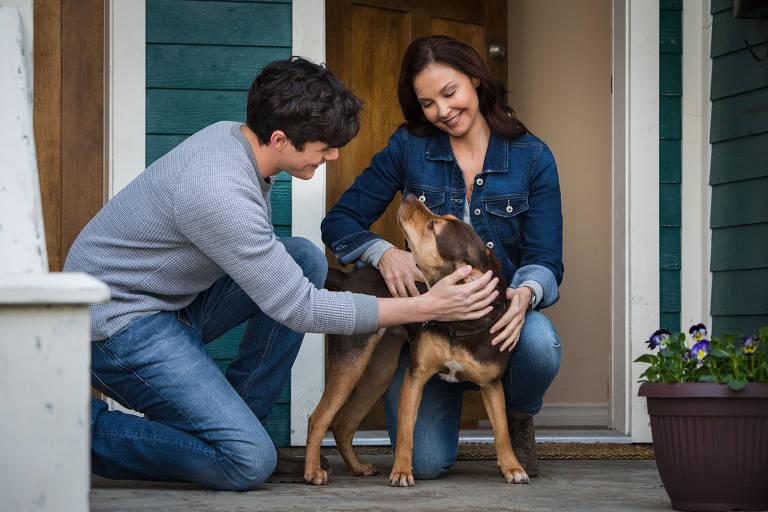 Bom Pra Cachorro - A Caminho de Casa