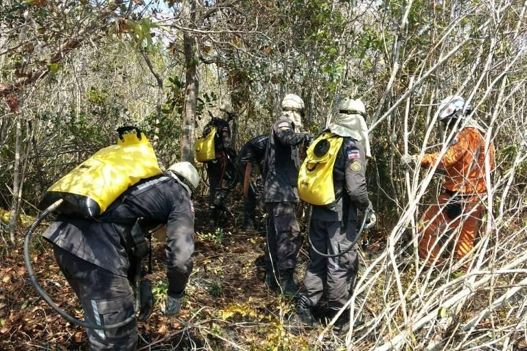 Bombeiros trabalham para controlar fogo na reserva Refúgio de Vida Silvestre do Rio dos Frades, em Porto Seguro (BA)