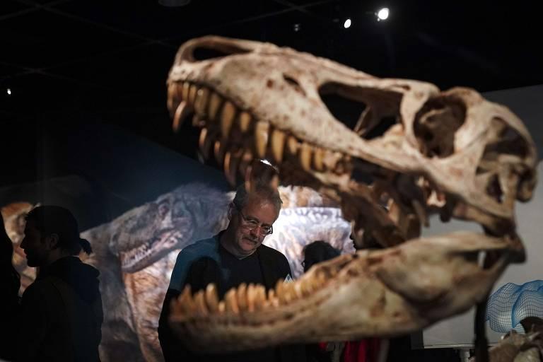 """Visitantes da exposição """"T. Rex: o maior predador"""", no Museu Americano de História Natural de NY, aberta em março de 2019"""