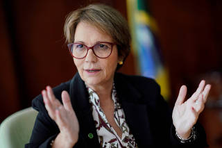 FILE PHOTO: Brazil's Agriculture Minister Tereza Cristina gestures during an interview with Reuters in Brasilia